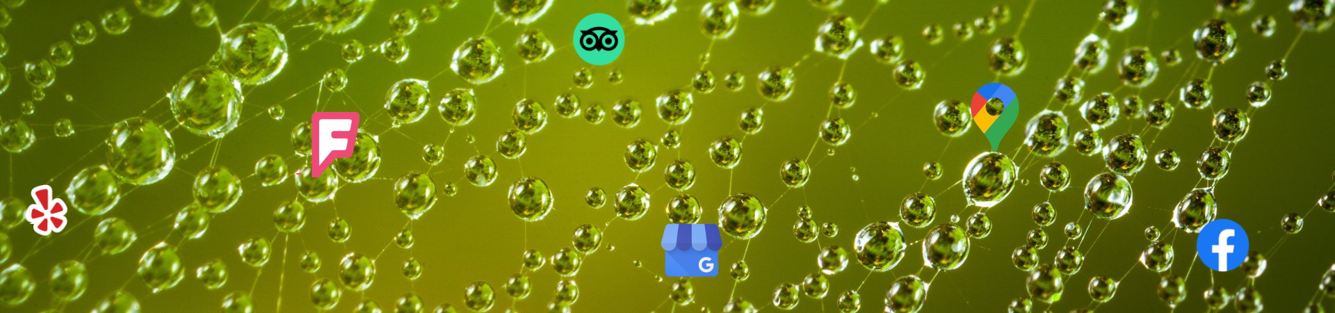 Linkbuilding & Citation websites om hoger in google te komen